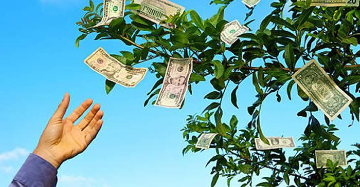 cum să te faci să câștigi bani